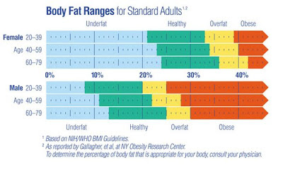 การวัดองค์ประกอบของร่างกาย (จากเครื่องชั่งน้ำหนักดีๆ)