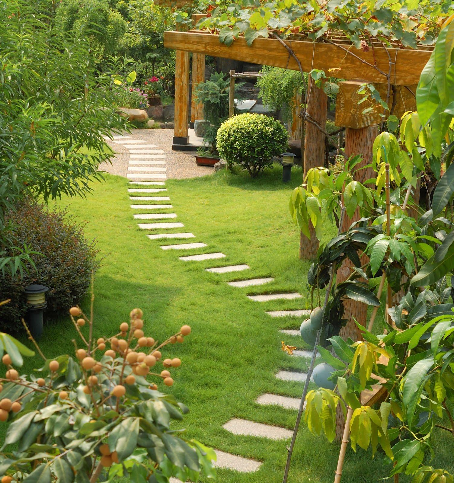 sprinkler juice landscaping your garden the first steps