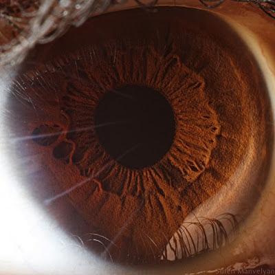 صور عيون للمسن، تحميل صور عيون العرب