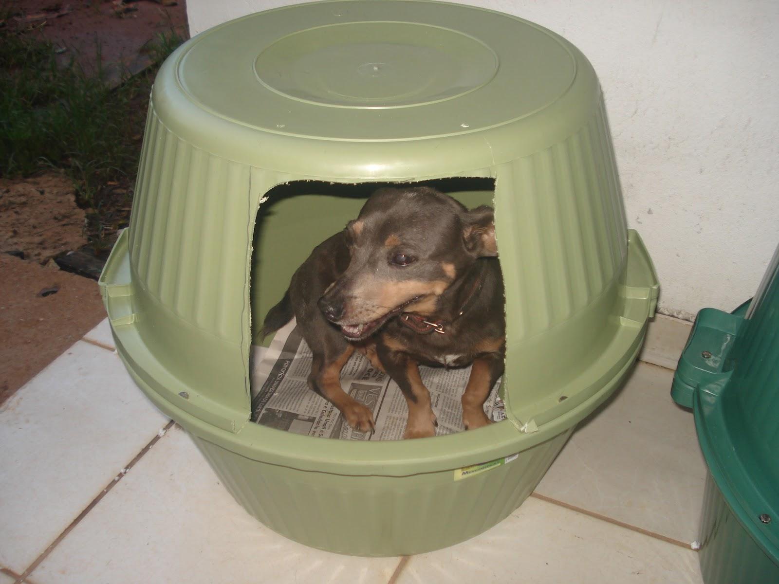 Casa de cachorro feito com bacias plásticas Meus Trabalhos  #355A4B 1600x1200