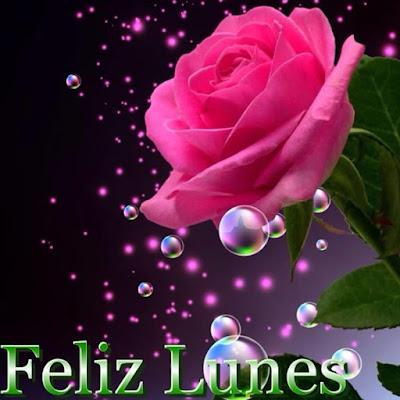 tarjetas de inicio lunes con rosas