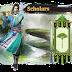 Perguruan di Age of Wushu : Scholars