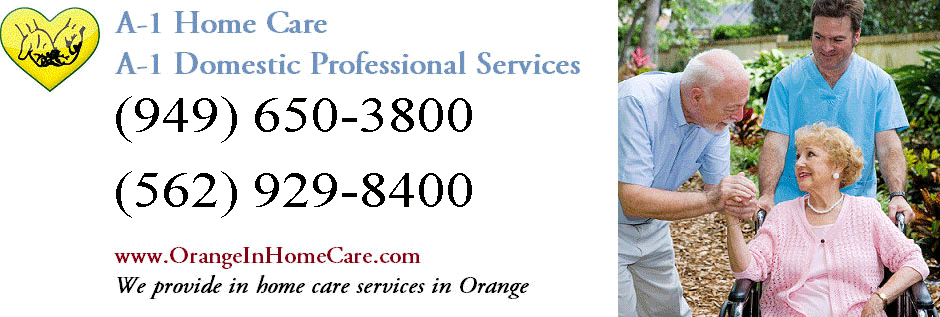 Orange In Home Care