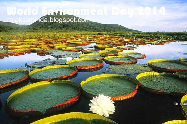 Hari Alam Sekitar Sedunia - World Environment Day