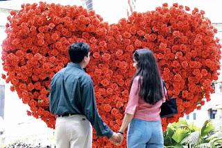 fotos de amor flores