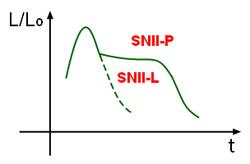 Curvas  de luz de las SNII-P y SNII-L. Las primeras tienen una fase de «meseta»  durante la cual el gas ionizado se enfría al expandirse, recombinándose  hasta volverse transparente. Este proceso compensa el decrecimiento de  luz y mantiene la luminosidad hasta que se hace neutro, momento en el  cual vuelve a decrecer. En el segundo caso, apenas hay capas externas,  las que probablemente se perdieron por interacción con alguna estrella  vecina. Se observa también que tiene un pico notablemente menos  acentuado que las SNIa.