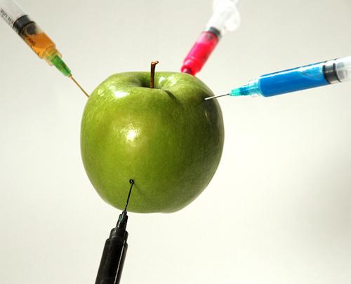 El Futuro de la Comida. ¡Exijamos la Etiquetación de los Alimentos Transgénicos!