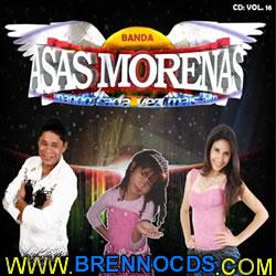 Asas Morenas   Vol.16 2013 | músicas