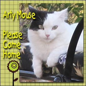 purring Arty Mouse comes home