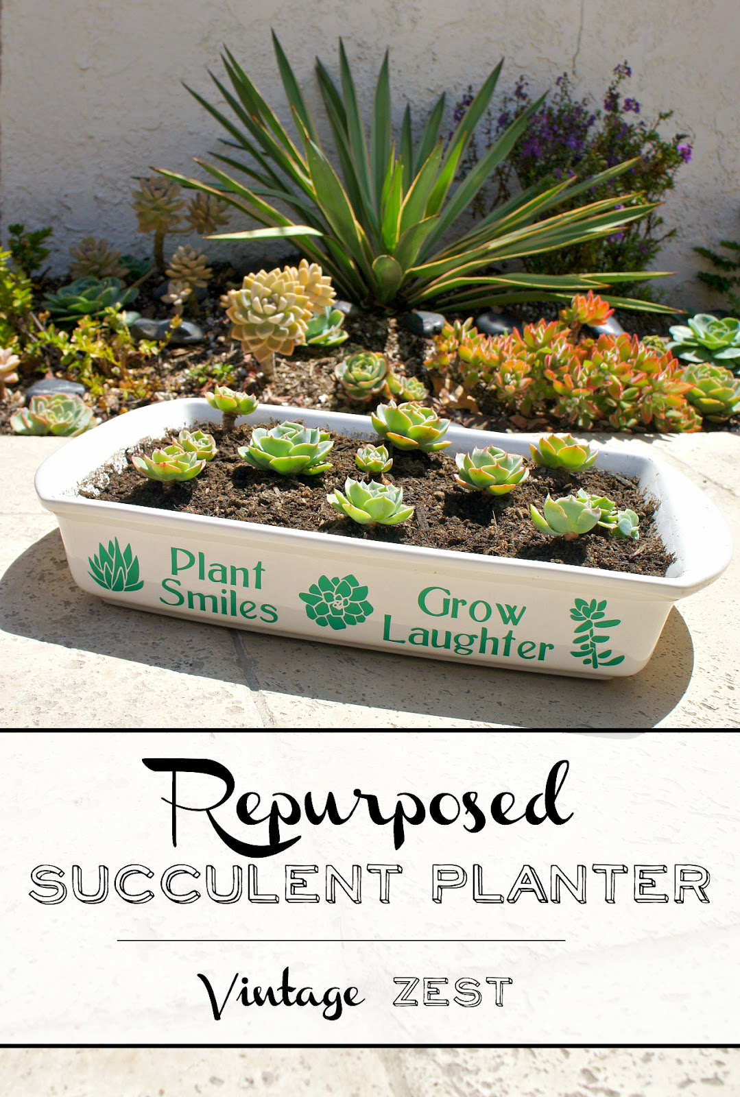 DIY Repurposed Succulent Planter on Diane's Vintage Zest!  #craft #repurpose #garden #diy #vinyl