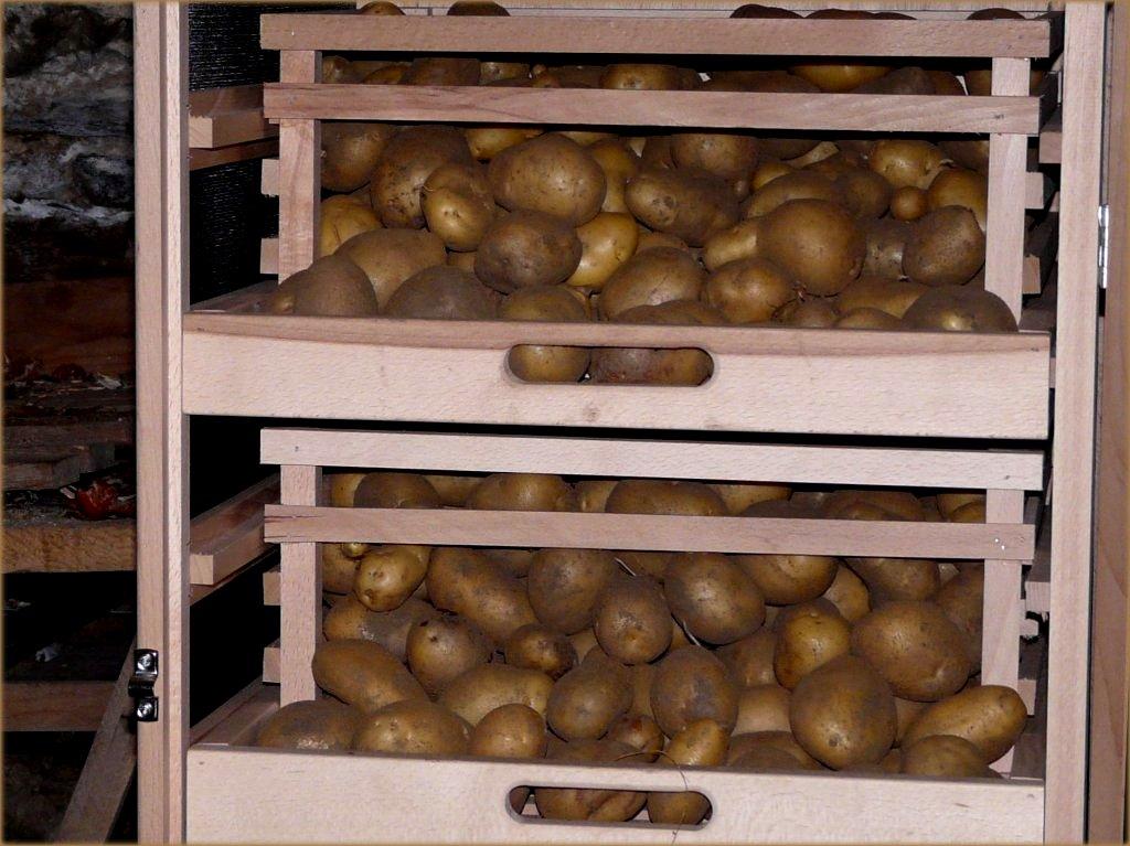 chronophonix les pommes de terre nous aiment par lm. Black Bedroom Furniture Sets. Home Design Ideas