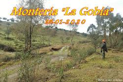 """MONTERÍA """"LA GOBIA"""" 2020"""