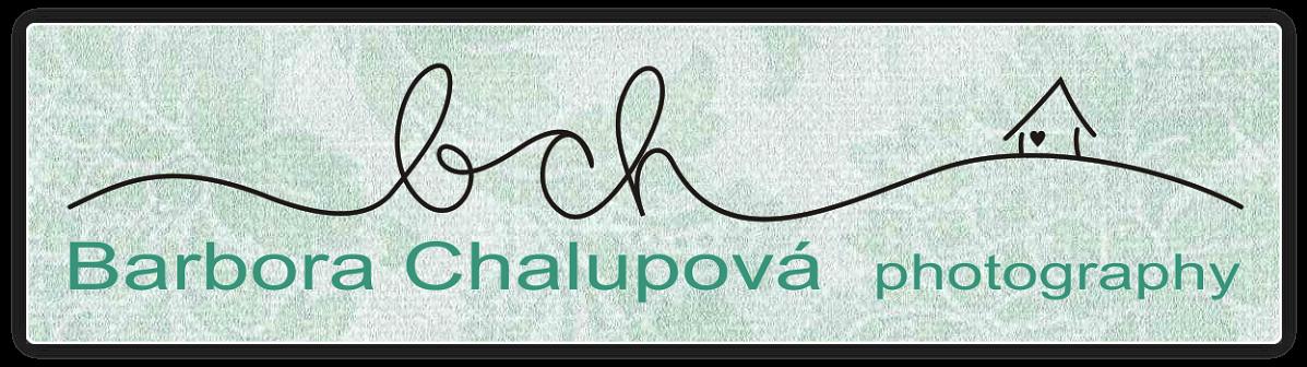 Barbora Chalupova fotografie