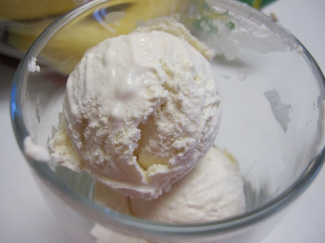 very low carb homemade ice cream
