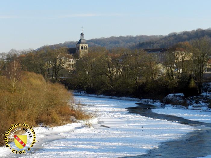 FLAVIGNY-SUR-MOSELLE (54) - Le long de la Moselle....gelée !