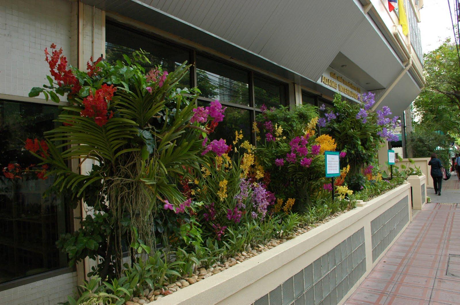 Desde bangkok abril 2011 for Jardineras para interiores