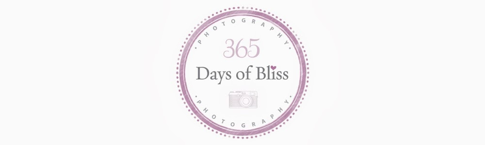 365 days of bliss