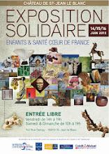 EXPOSITION SOLIDAIRE AU CHATEAU DE SAINT JEAN LE BLANC