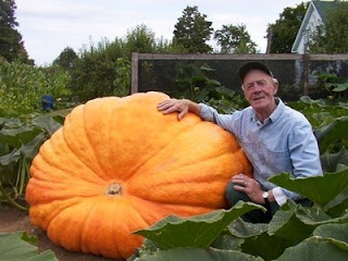 Smashing Pumpkins band name origins - Howard Dill pumpkin