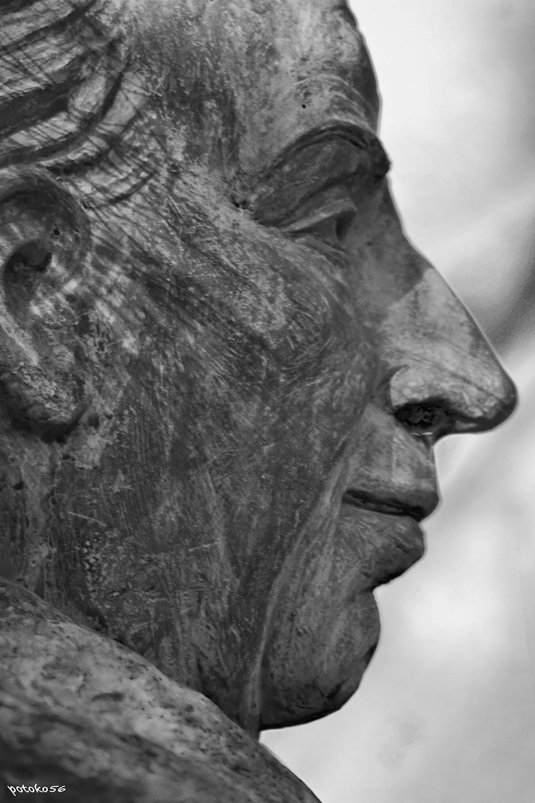 Perfil estatua José Celestino Mutis (jardín botánico Rota)