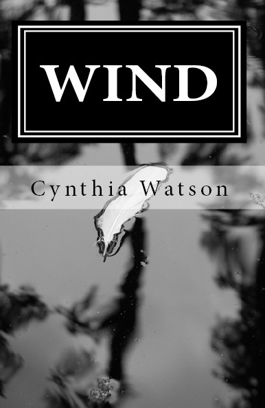 WIND is the first book in my Young Adult Paranormal Romance ETERNAL SYMMETRY ...