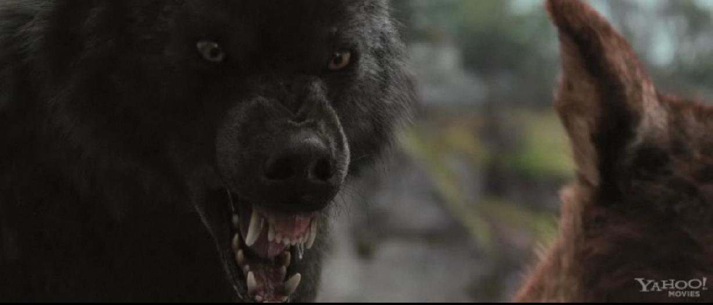Werewolf Twilight Pack Twilight Pack: LIfesty...