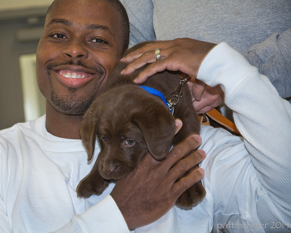 Another head shot of the man, who is now REALLY smiling! He is reaching up to hold the chocolate lab puppy with both of his hands, his left hand over the top of the puppy and his right hand supporting the puppy's chest. The puppy appears to be sliding down the front of the man's chest.