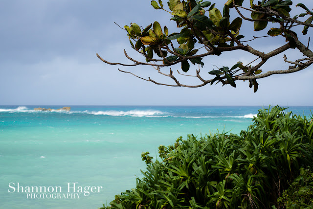 Shannon Hager Photography, Okinawa, Tropical Ocean, East China Sea