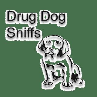 drug dog, drug dog training, drug dog facts, how to fool a drug dog, anti drug dog, how to train a drug dog, drug sniffing dog, drug sniffing dog training, drug dog accuracy, police drug dog, drug detection dog, supreme court drug dog