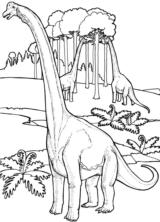 u sa ha na coloring pages - photo #19
