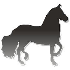 The Paso Fino Horse