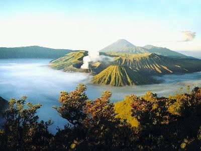 http://www.wisatagunungbromo.com/2013/04/penanjakan-gunung-bromo.html
