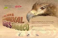 DIA MUNDIAL DE LAS AVES EN EL BOTANICO