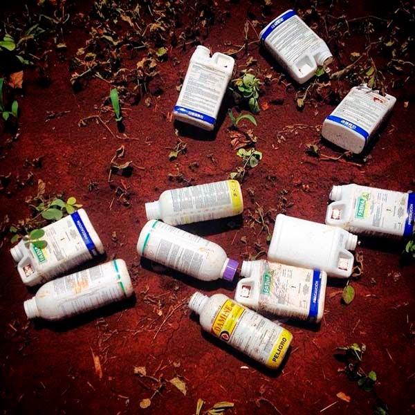 Botellas vacias de herbicidas en un campo de maíz en Yucatán, México