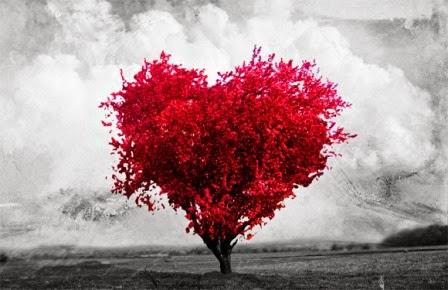 El Árbol del Amor