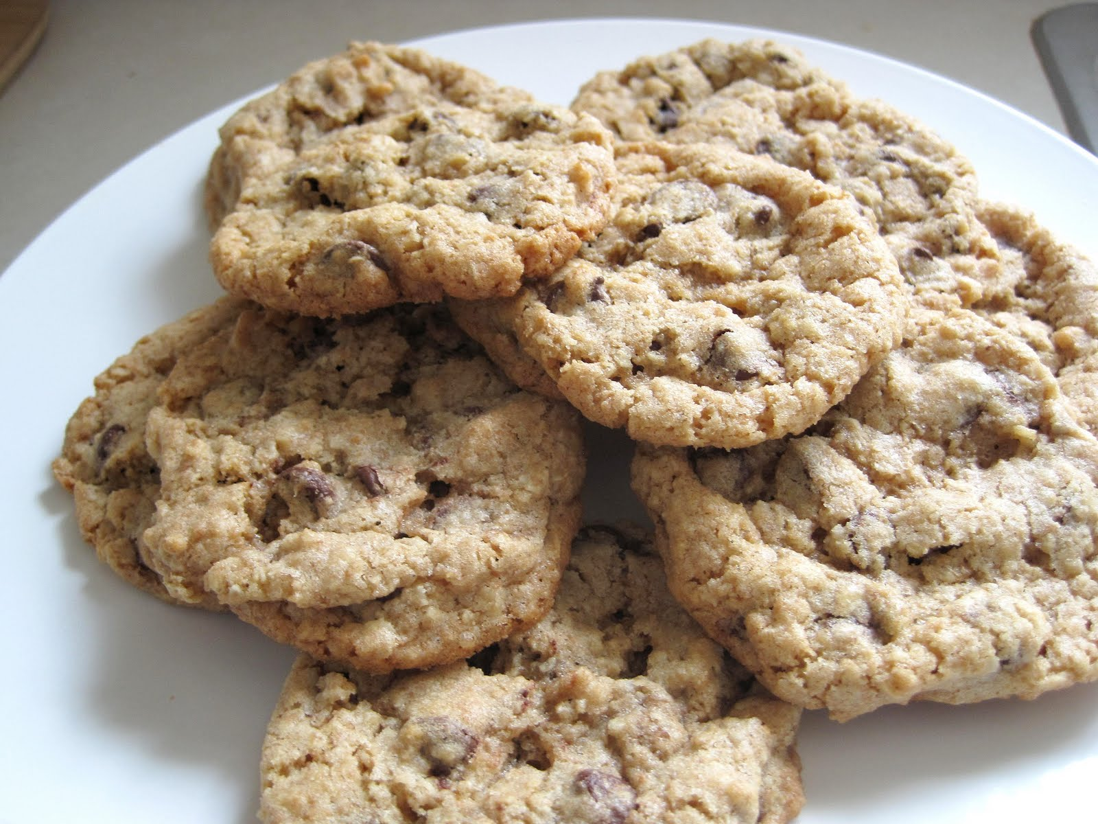 little bee bakery: Chocolate Chip Oatmeal Cookies- THE BEST
