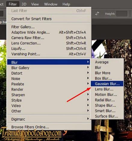 sekarang saatnya Membuat Blur Foto, caranya Klik menu Filter => Blur ...