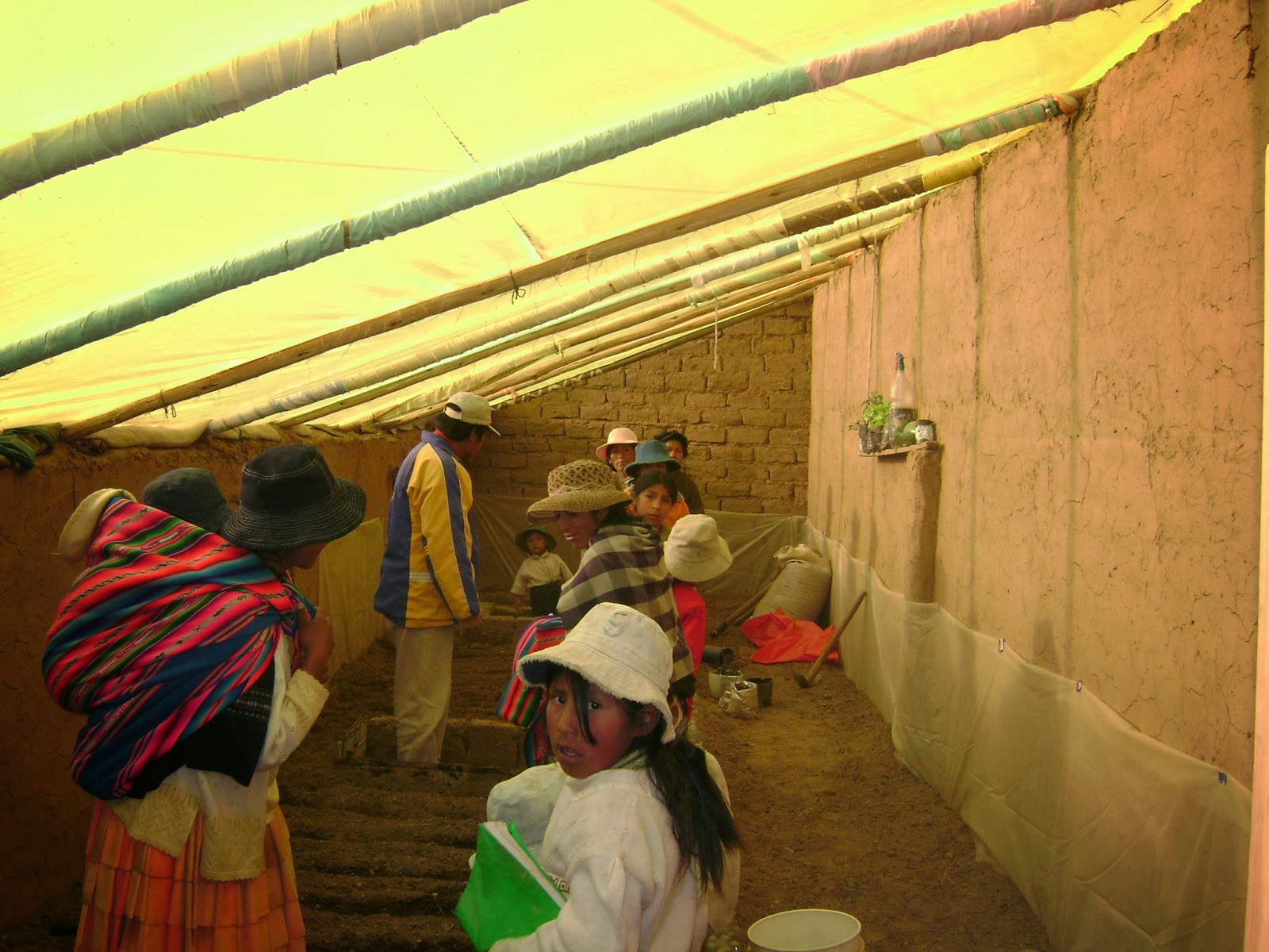 Agricultura Urbana En El Alto Manual Producci N De