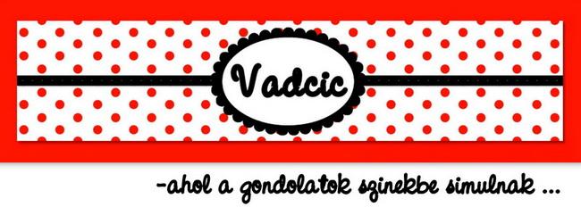 Vadcic  blogja