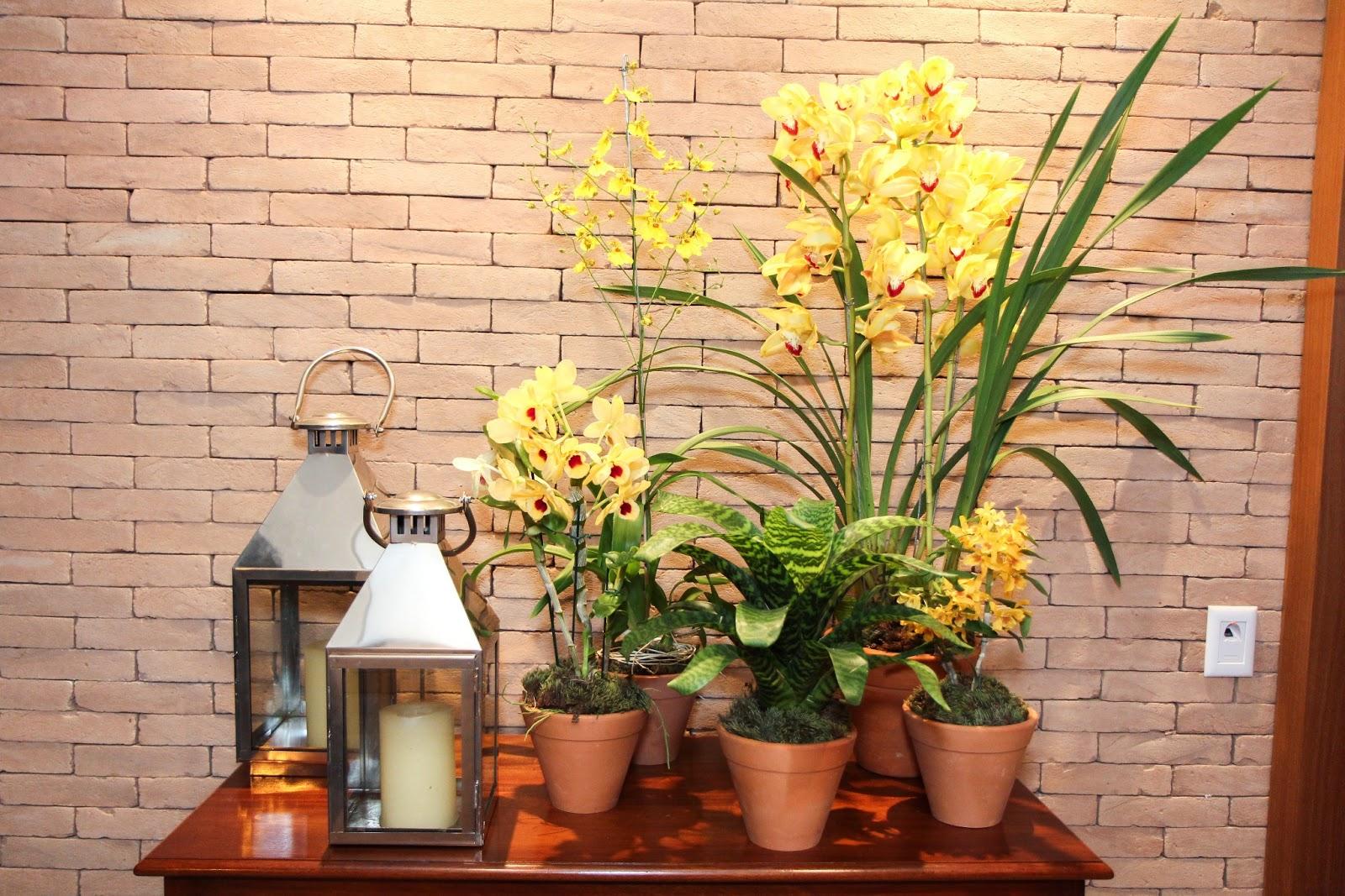 flores jardim guedala:Flor de Lis Flores: Festa de Aniversário