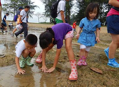 sister island marine park how to go