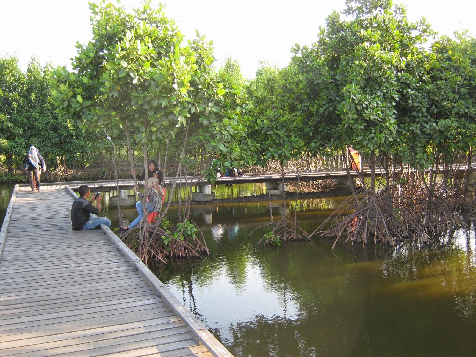Cantiknya Taman Walikota Nusantara Banda Aceh From Aceh With Love