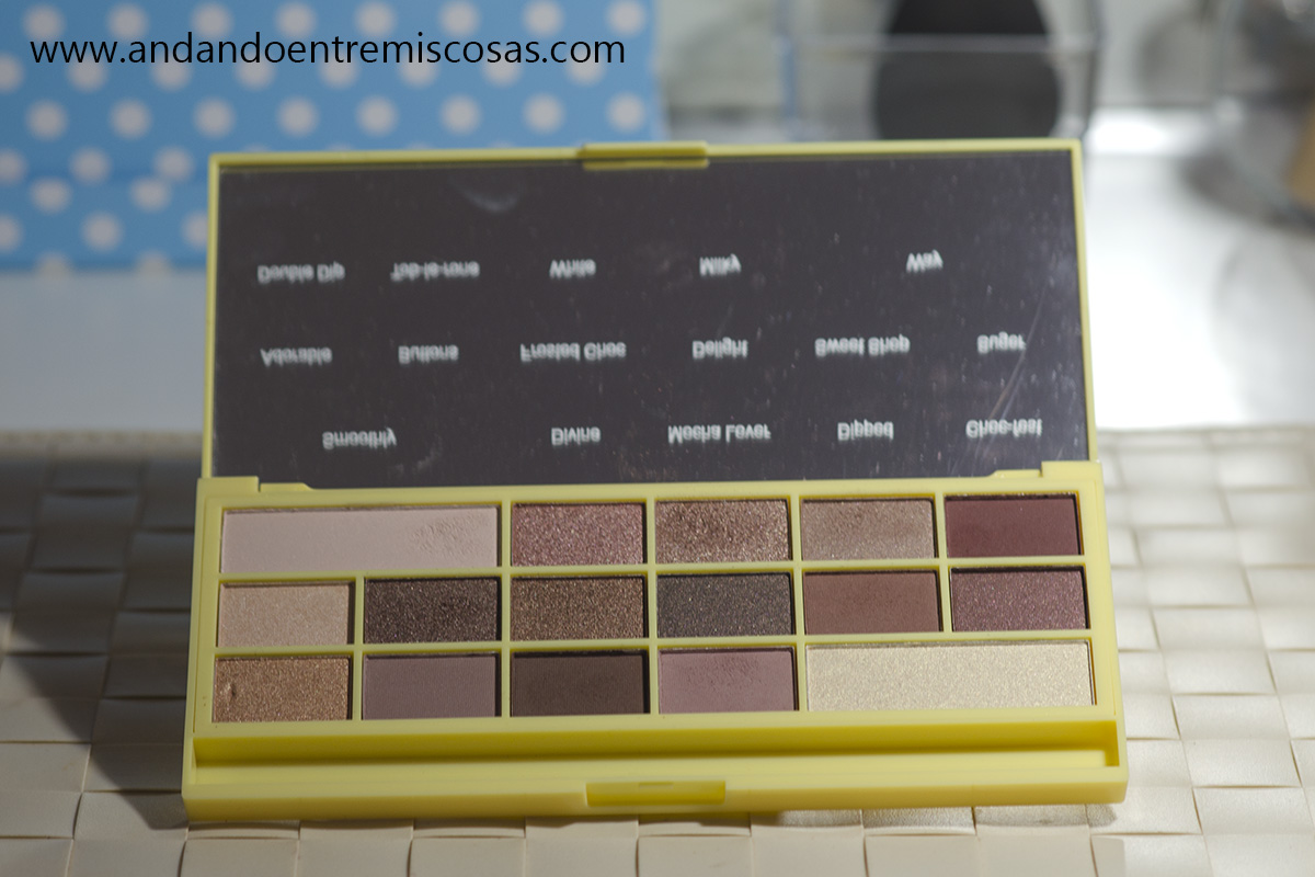 Paleta Naked Chocolate