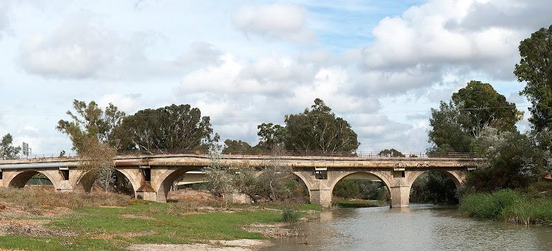 Puente de Cartuja
