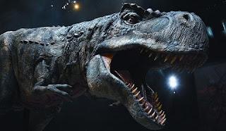 Já são muitos os cientistas de todo o mundo que contam com a possibilidade de encontrar DNA intacto em células sanguíneas de dinossauros. A descoberta sugere que dezenas de fósseis de dinossauros que estão agora em museus ao redor do mundo poderiam conter tecidos moles, e com eles, as respostas às perguntas-chave sobre a sua evolução, fisiologia e comportamento. Além disso, alguns cientistas têm especulado sobre a possibilidade de que exista DNA intacto neles.