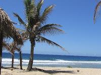 Arorangi Beach romantic getaways honeymoon