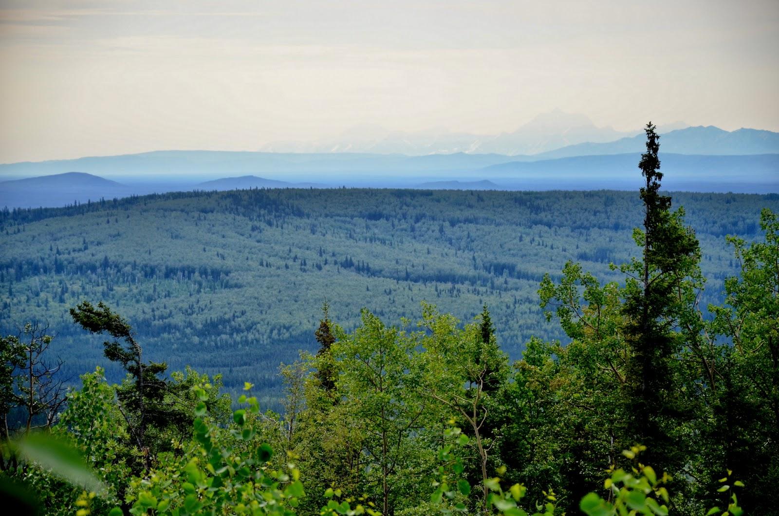Wonderful landscape as we drive north from Denali, Alaska