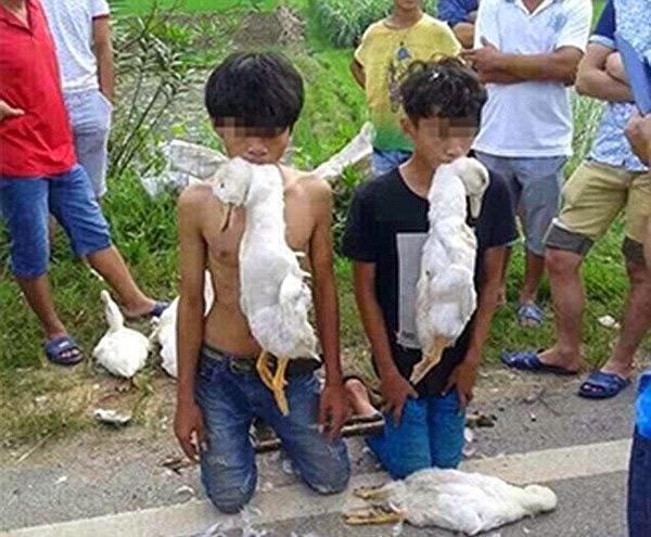 2 thiếu niên ăn trộm bị bắt quỳ và ngậm vịt chết