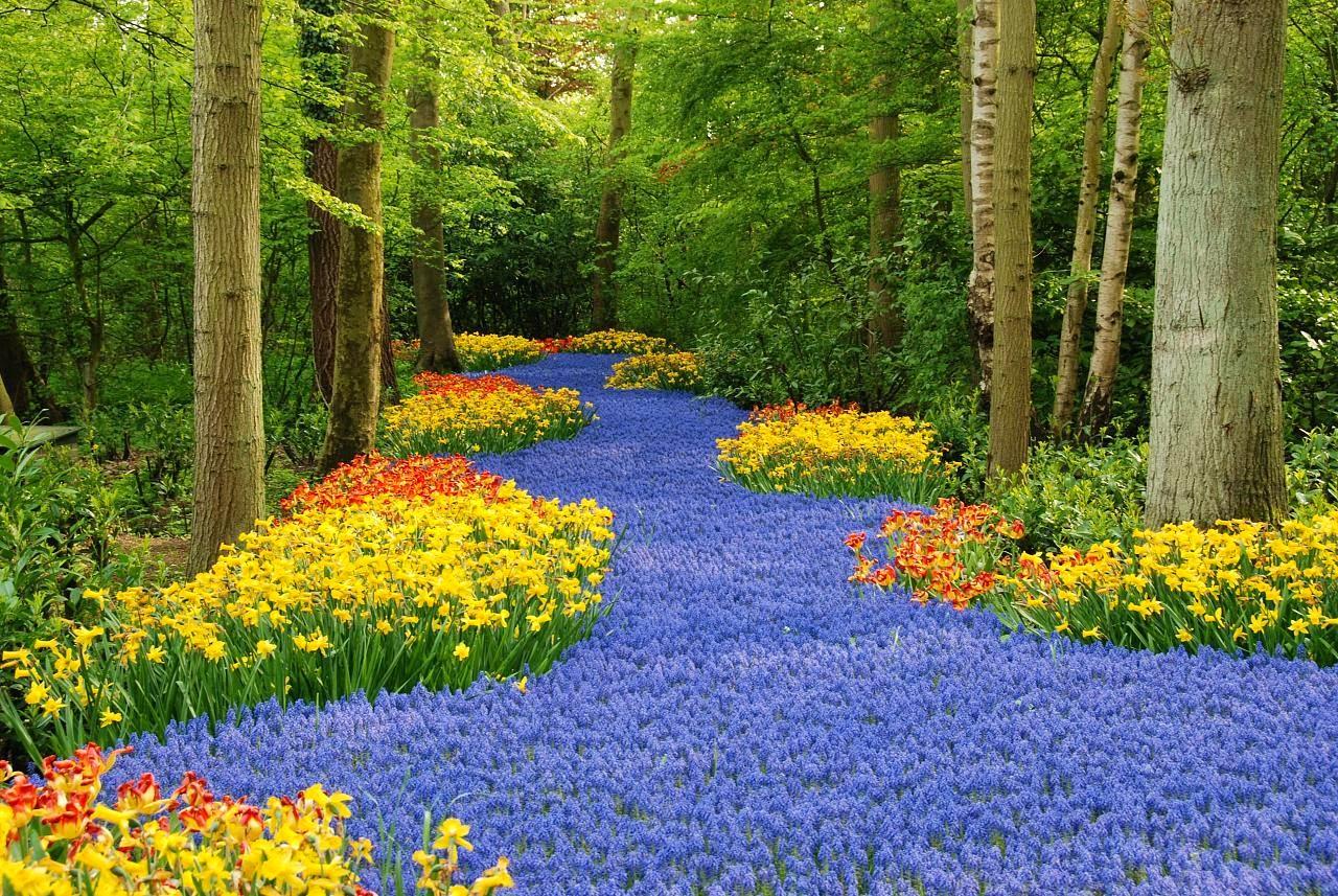 Imagenes ethel imagenes de jardines mas hermosos del for Figuras para jardines