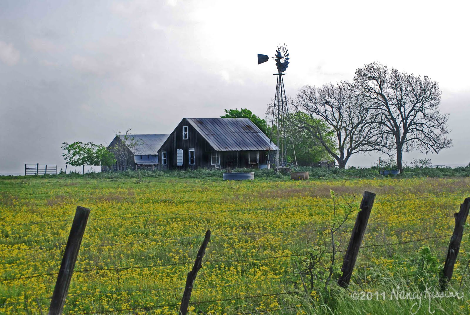 Wild About Texas Flatonia Farmhouse